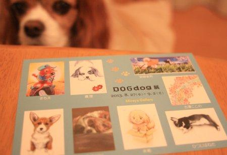 dogdog2.jpg