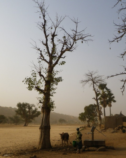 20120121_01_Dogon_Hiking.jpg