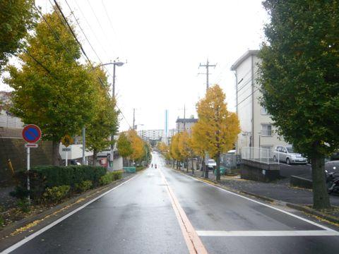 秋が深まり