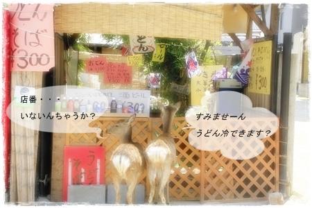 02_MG_5204-2013-.jpg