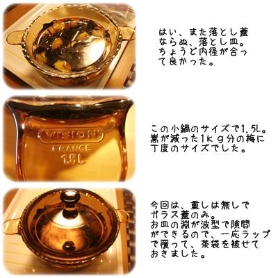 梅干し(紫蘇漬け③)