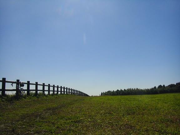 20141115秋元牧場① (10)