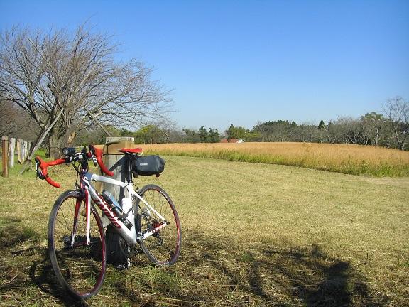 20141115秋元牧場① (11)