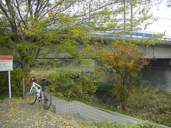 20141129雨の手賀沼 (4)