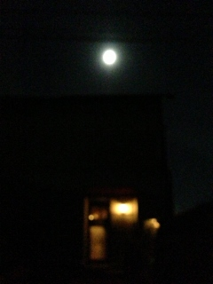 IMG_3078満月の夜1 (240x320)