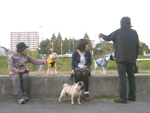 20121108_5.jpg