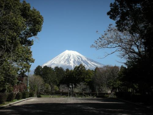 北に 富士