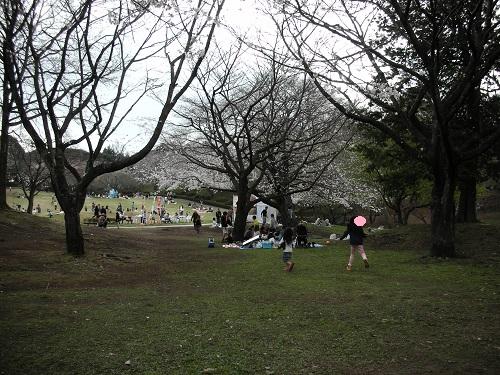 賑やかな公園中央部