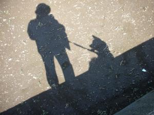 母さんと柴犬