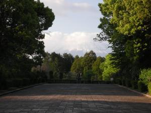 富士山よし
