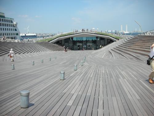 横浜港大さん橋ホ-ル くじらのせなか1