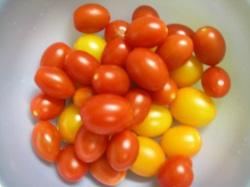 トマトが止まらない