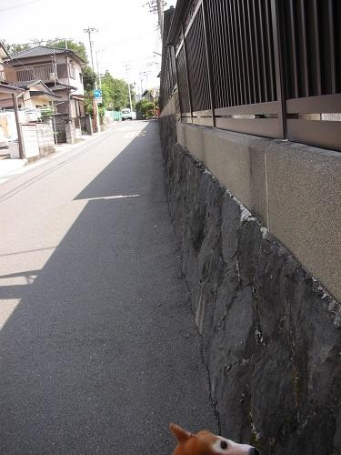 お寺さんの塀