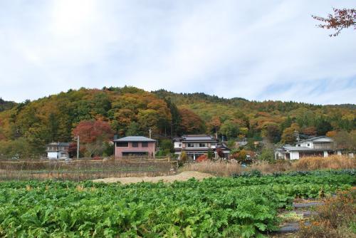 忍野村風景