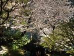 3月日本2