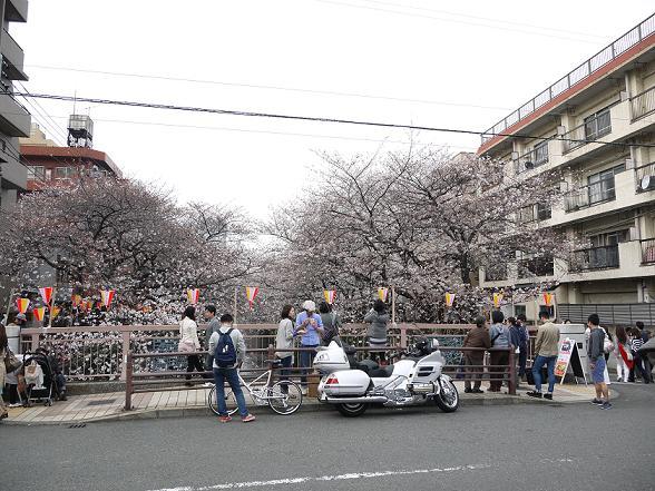 2013_0320戸田別館 0078