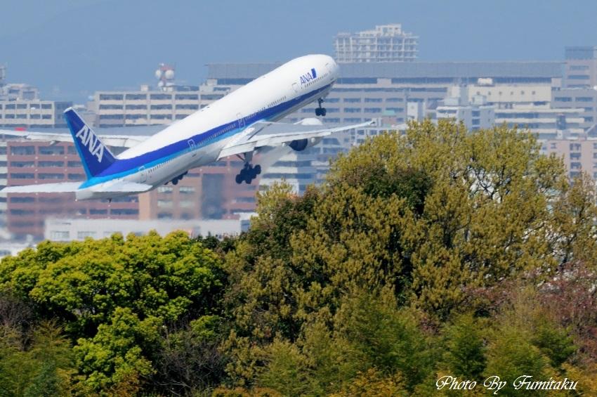 2504234福岡 (53)