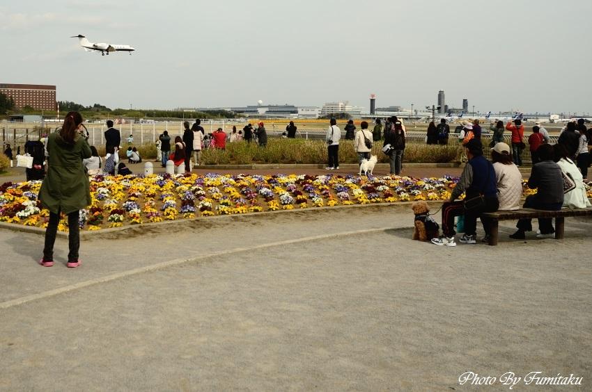 250326成田 (12)