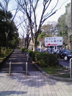 7.横断歩道渡りきったら右折し、この道(動物園通り)を直進