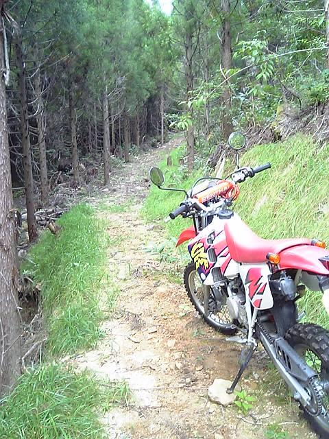 offbike24.jpg