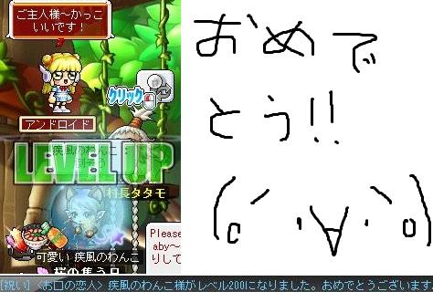Maple121103_200116.jpg