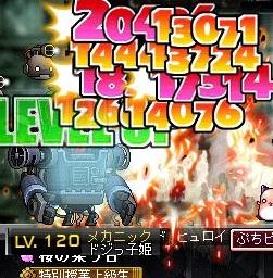 Maple121107_155436.jpg