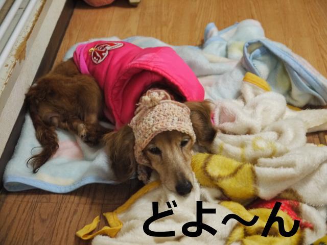 025+-+繧ウ繝斐・_convert_20120304230528 2012/03/04