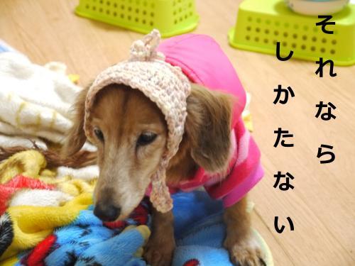 031+-+繧ウ繝斐・_convert_20120304230644 2012/03/04