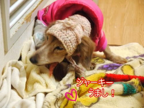 035+(2)+-+繧ウ繝斐・_convert_20120316155643 2012/03/16