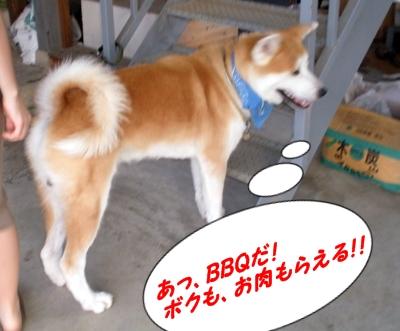 b_20130817_18.jpg