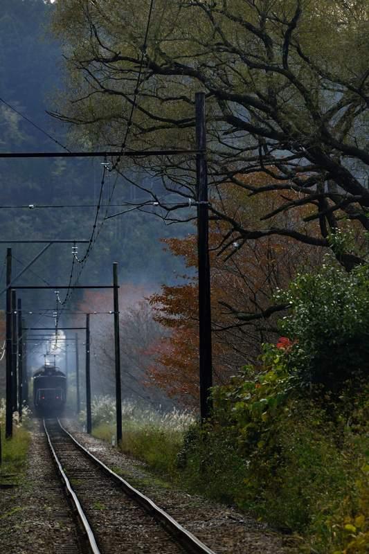 oigawa2014110708_450take1b2.jpg