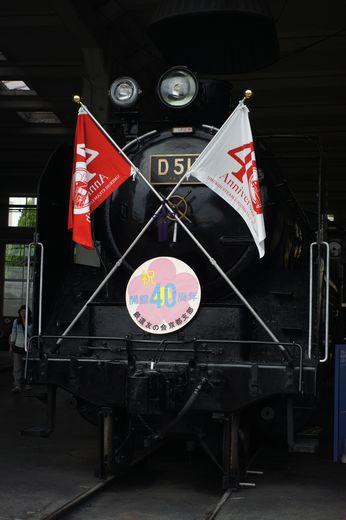 DSC00787-1.jpg
