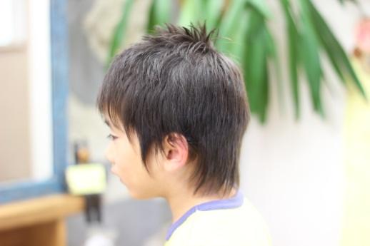 IMG_9464.jpg