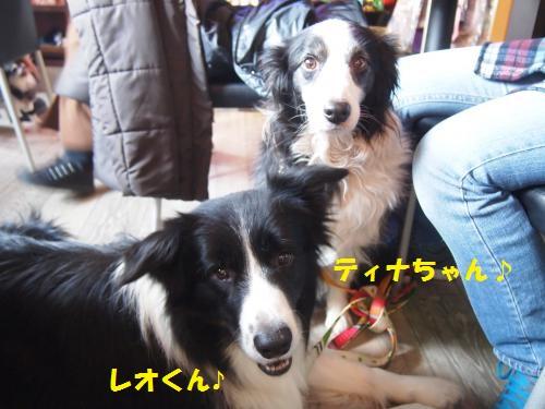 001_convert_20140125212038.jpg
