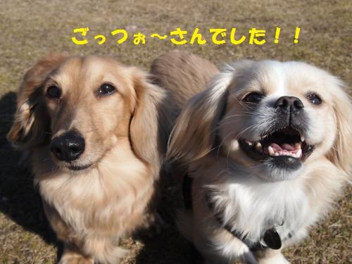001_convert_20140129221410.jpg