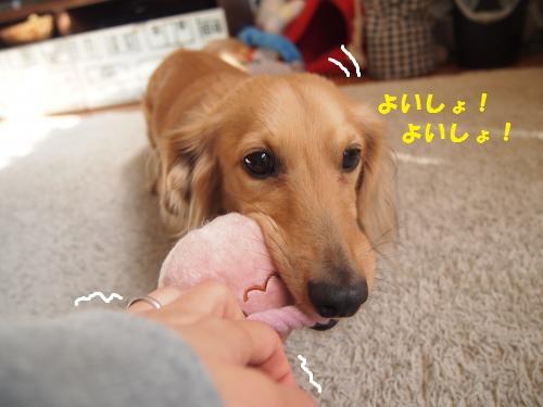 003_convert_20140131154502.jpg
