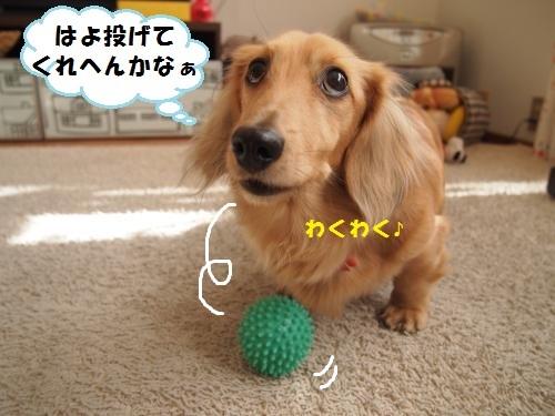 004_convert_20140117141324.jpg