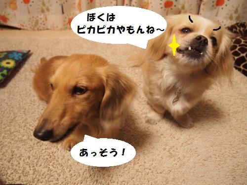 005_convert_20140122214125.jpg