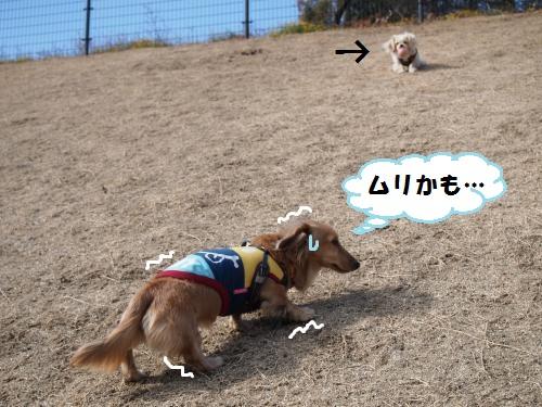 031_convert_20140114182230.jpg