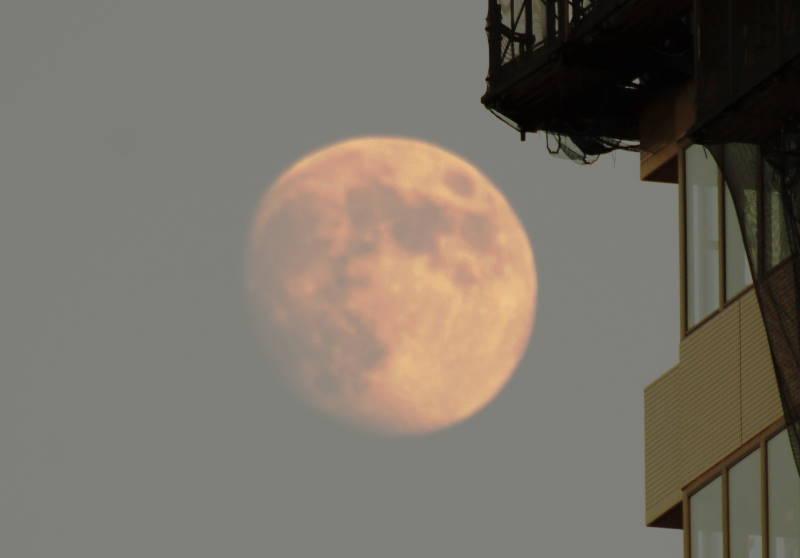 ビル影の月
