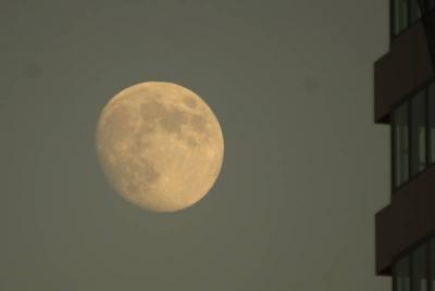十三夜の月 参考