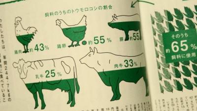 輸入されたトウモロコシの77%がGOMで