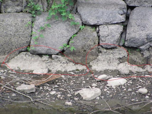 小峰城清水門西側石垣面2011年6月24日a.