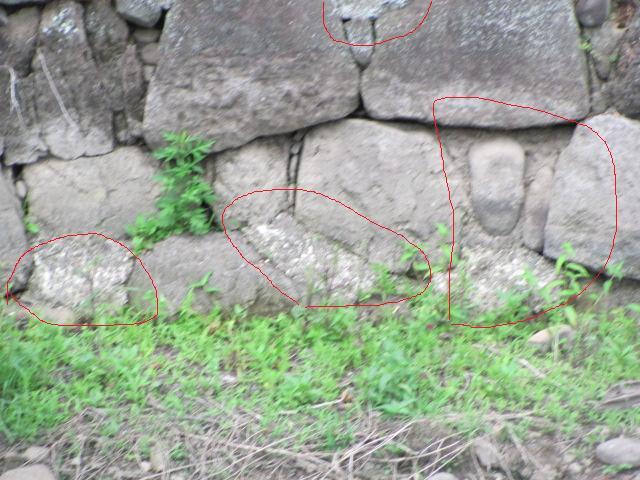 小峰城清水門西側石垣面2011年6月24日c