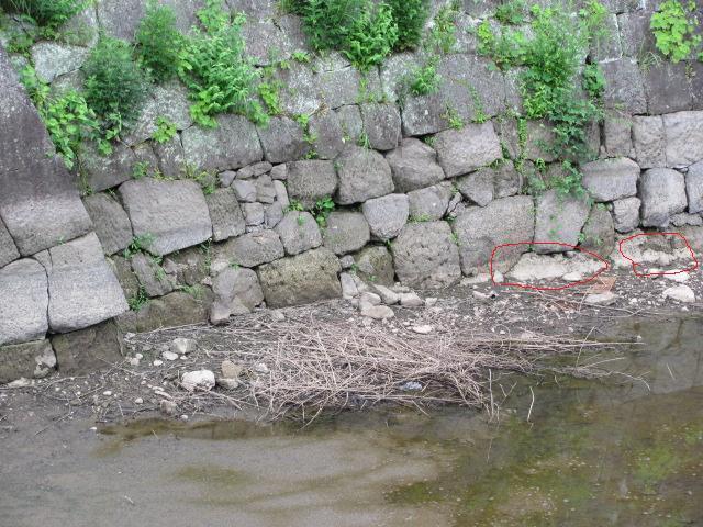 小峰城清水門西側石垣面2011年6月24日d