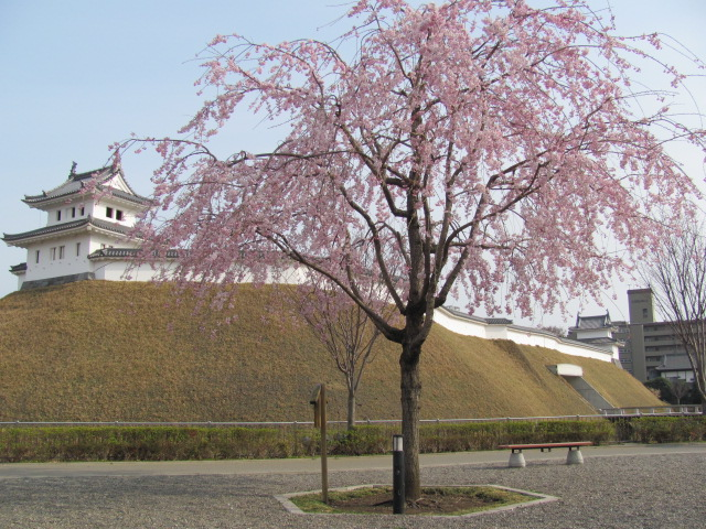 宇都宮城桜平成13年4月1日f