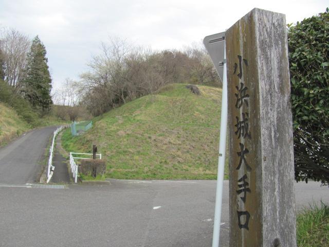 小浜城平成25年4月15日s