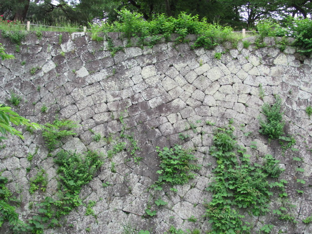 小峰城清水門西側石垣面2011年6月24日e