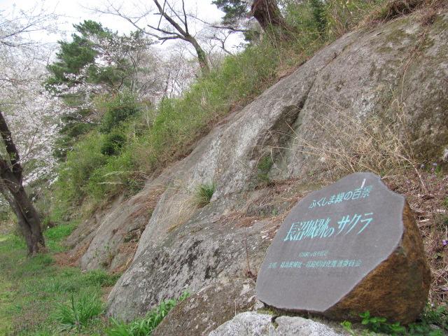 長沼城の桜平成25年4月17日c