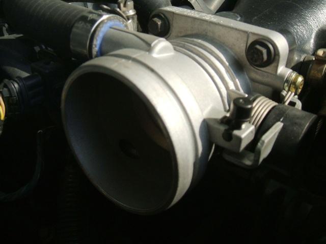 DSCF1408.jpg